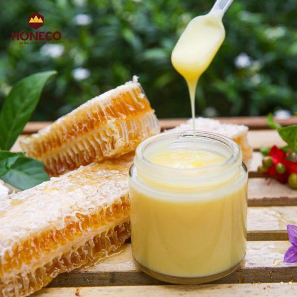 Sữa ong chúa Tam Đảo 100g