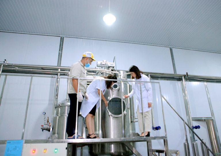 Quy trình sản xuất Mật ong Curcumin