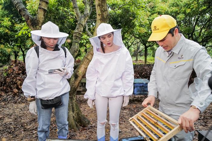 Trang trại khai thác sữa ong chúa Honeco